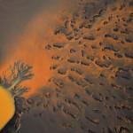 Baum im Fluss der Farben © Roland Schweizer